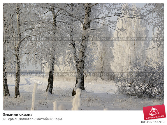 Зимняя сказка, фото № 145910, снято 8 ноября 2007 г. (c) Герман Филатов / Фотобанк Лори