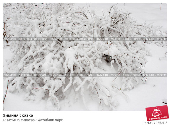 Зимняя сказка, фото № 166418, снято 15 февраля 2007 г. (c) Татьяна Макотра / Фотобанк Лори