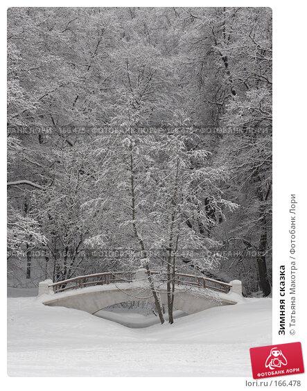 Купить «Зимняя сказка», фото № 166478, снято 15 февраля 2007 г. (c) Татьяна Макотра / Фотобанк Лори