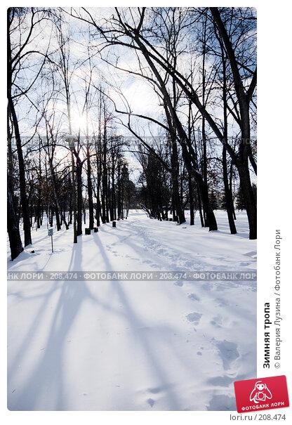Зимняя тропа, фото № 208474, снято 22 февраля 2008 г. (c) Валерия Потапова / Фотобанк Лори
