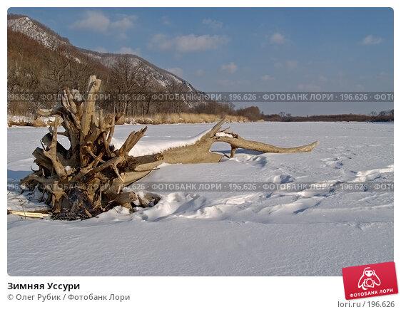 Зимняя Уссури, фото № 196626, снято 31 января 2008 г. (c) Олег Рубик / Фотобанк Лори