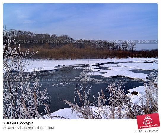 Купить «Зимняя Уссури», фото № 210906, снято 27 февраля 2008 г. (c) Олег Рубик / Фотобанк Лори
