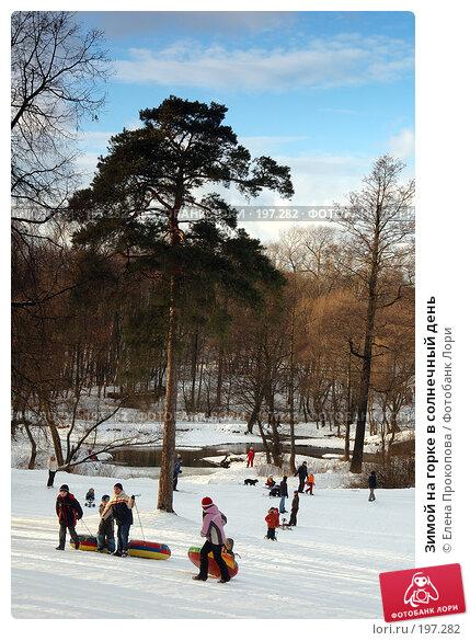 Зимой на горке в солнечный день, фото № 197282, снято 2 февраля 2008 г. (c) Елена Прокопова / Фотобанк Лори