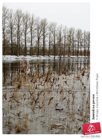 Купить «Зимой на речке», фото № 220058, снято 8 марта 2008 г. (c) Игорь Соколов / Фотобанк Лори