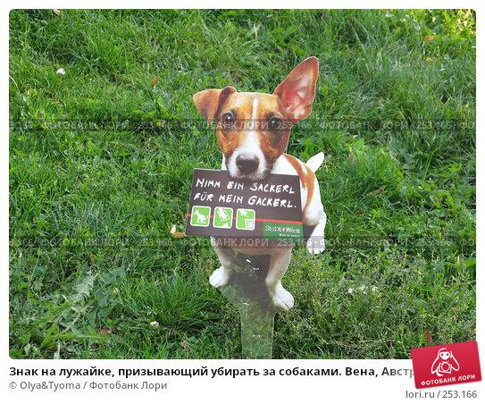 Купить «Знак на лужайке, призывающий убирать за собаками. Вена, Австрия.», фото № 253166, снято 24 сентября 2007 г. (c) Olya&Tyoma / Фотобанк Лори
