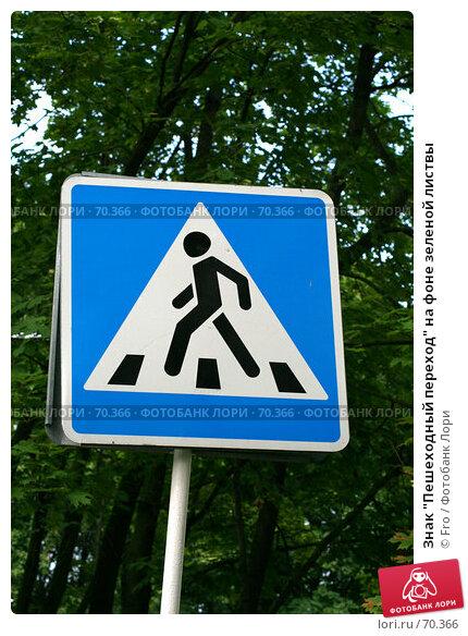 """Знак """"Пешеходный переход"""" на фоне зеленой листвы, фото № 70366, снято 5 августа 2007 г. (c) Fro / Фотобанк Лори"""
