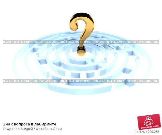 Знак вопроса в лабиринте, иллюстрация № 290286 (c) Фролов Андрей / Фотобанк Лори