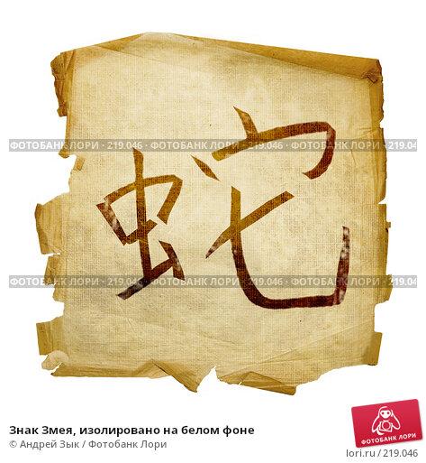 Знак Змея, изолировано на белом фоне, иллюстрация № 219046 (c) Андрей Зык / Фотобанк Лори