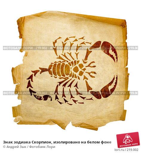 Знак зодиака Скорпион, изолировано на белом фоне, иллюстрация № 219002 (c) Андрей Зык / Фотобанк Лори