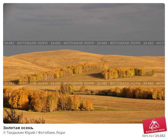 Золотая осень, фото № 24682, снято 30 сентября 2006 г. (c) Талдыкин Юрий / Фотобанк Лори
