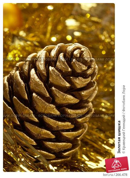 Золотая шишка, фото № 266478, снято 13 декабря 2005 г. (c) Кравецкий Геннадий / Фотобанк Лори