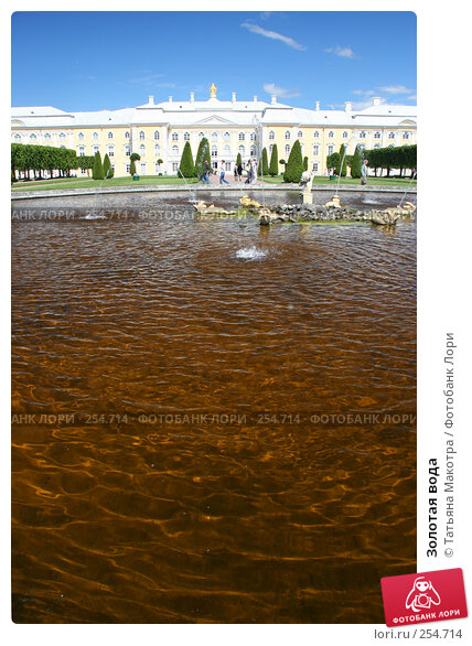 Золотая вода, фото № 254714, снято 16 июня 2006 г. (c) Татьяна Макотра / Фотобанк Лори