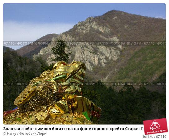 Золотая жаба - символ богатства на фоне горного хребта Старая Планина, фото № 67110, снято 16 апреля 2005 г. (c) Harry / Фотобанк Лори