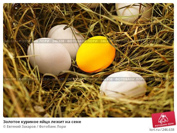 Золотое куриное яйцо лежит на сене, эксклюзивное фото № 246638, снято 25 марта 2008 г. (c) Евгений Захаров / Фотобанк Лори