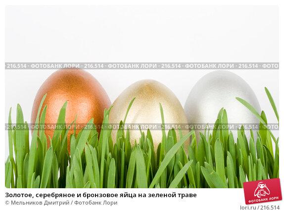 Купить «Золотое, серебряное и бронзовое яйца на зеленой траве», фото № 216514, снято 6 марта 2008 г. (c) Мельников Дмитрий / Фотобанк Лори
