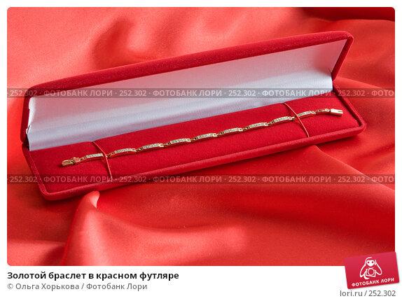 Купить «Золотой браслет в красном футляре», фото № 252302, снято 13 апреля 2008 г. (c) Ольга Хорькова / Фотобанк Лори