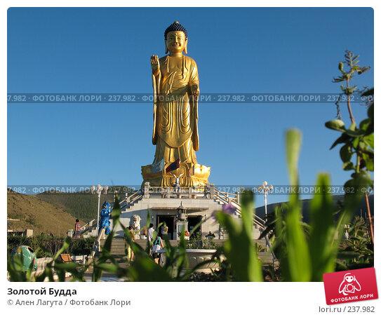Купить «Золотой Будда», фото № 237982, снято 9 августа 2007 г. (c) Ален Лагута / Фотобанк Лори