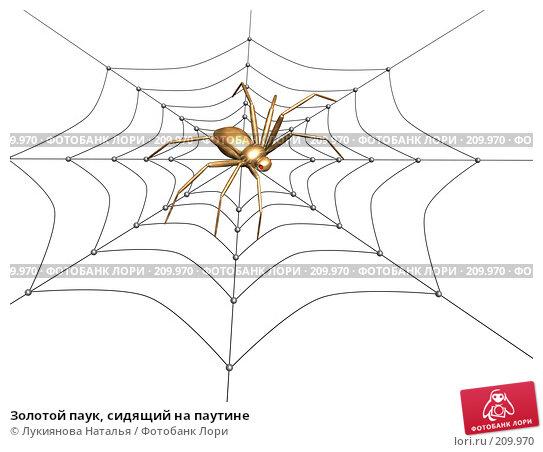 Золотой паук, сидящий на паутине, иллюстрация № 209970 (c) Лукиянова Наталья / Фотобанк Лори