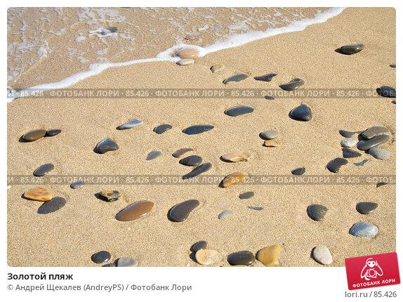 Купить «Золотой пляж», фото № 85426, снято 14 августа 2007 г. (c) Андрей Щекалев (AndreyPS) / Фотобанк Лори