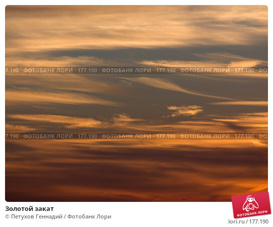 Золотой закат, фото № 177190, снято 3 сентября 2007 г. (c) Петухов Геннадий / Фотобанк Лори