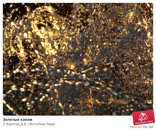 Купить «Золотые капли», фото № 192166, снято 8 августа 2007 г. (c) Карелин Д.А. / Фотобанк Лори