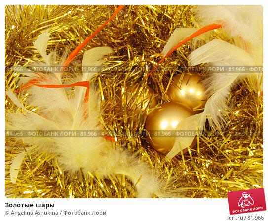 Золотые шары, фото № 81966, снято 3 сентября 2007 г. (c) Angelina Ashukina / Фотобанк Лори