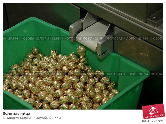 Золотые яйца, фото № 28994, снято 19 июля 2006 г. (c) 1Andrey Милкин / Фотобанк Лори