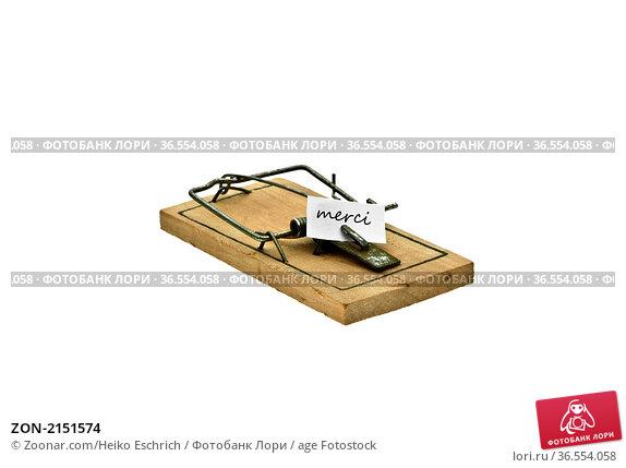 ZON-2151574. Стоковое фото, фотограф Zoonar.com/Heiko Eschrich / age Fotostock / Фотобанк Лори