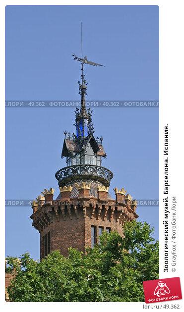Зоологический музей. Барселона. Испания., фото № 49362, снято 24 мая 2007 г. (c) GrayFox / Фотобанк Лори