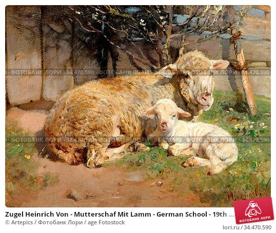 Zugel Heinrich Von - Mutterschaf Mit Lamm - German School - 19th ... Редакционное фото, фотограф Artepics / age Fotostock / Фотобанк Лори